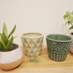 北欧インテリアにも合う!観葉植物におすすめの植木鉢『FARM』